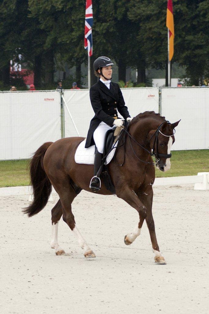 Gisella Bartels fysiotherapie voor paarden