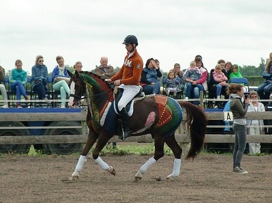 Anatomie paard, skelet paard, spieren paard, Gisella Bartels, clinic dressuur, Bartels Horse & Health Instituut