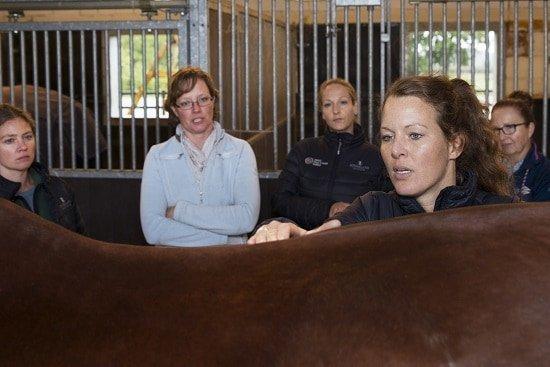Opleiding tot sportmasseur voor paarden, Gisella Bartels, palpatie, rugproblemen paard